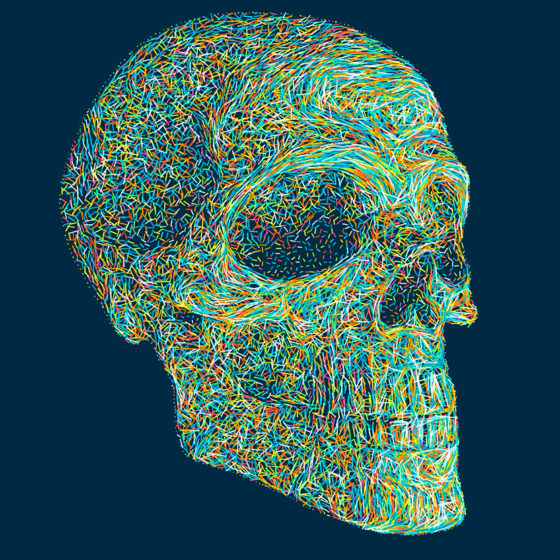 colorful skull art painting